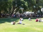 Stanford lawn