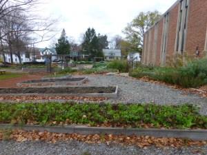 ~Allegheny organic farm