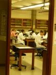 ~SJFC labs